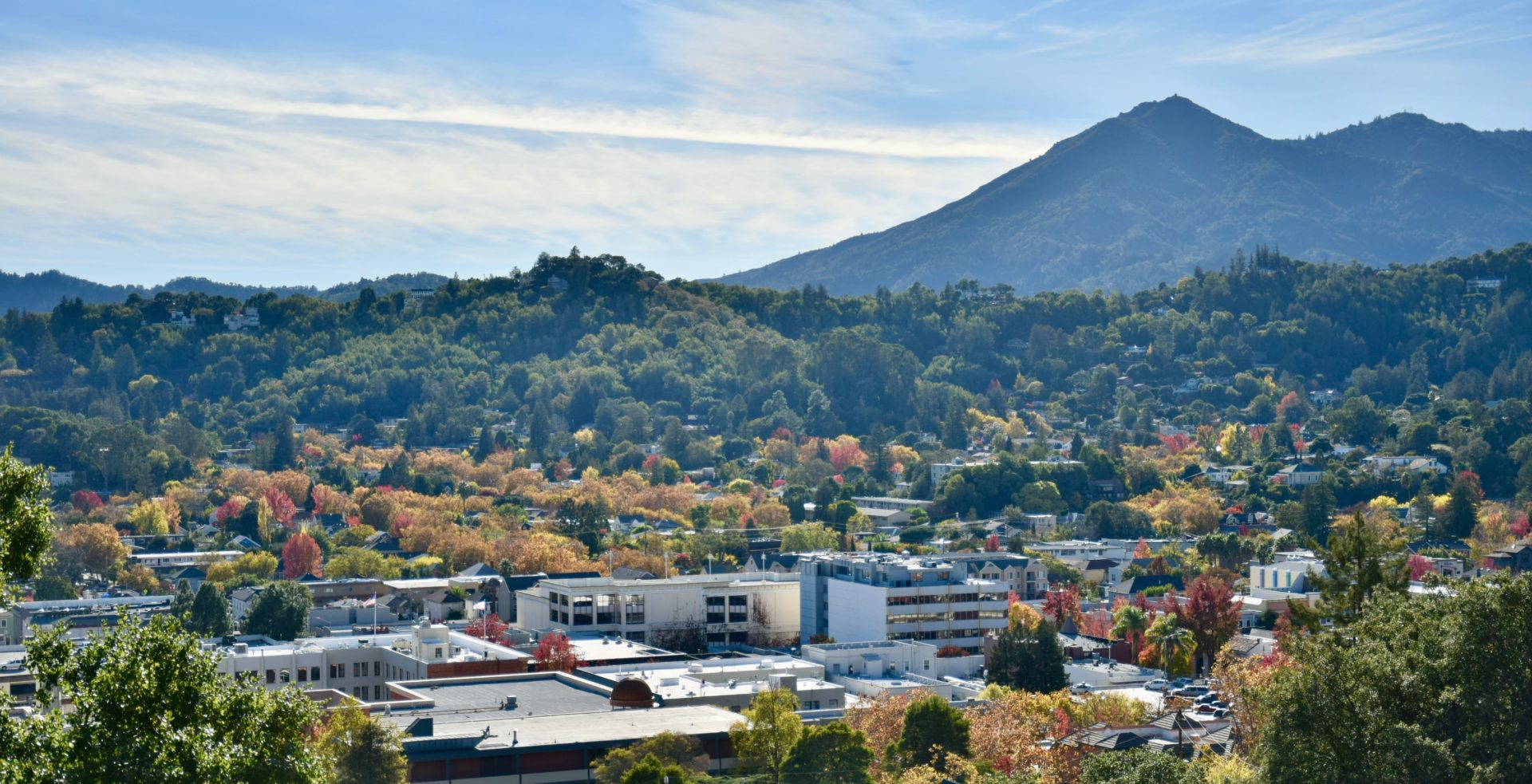 A view of downtown San Rafael in front of the sweeping landscape of Mt Tamalpais, where PRANDI offers expert Marin property management